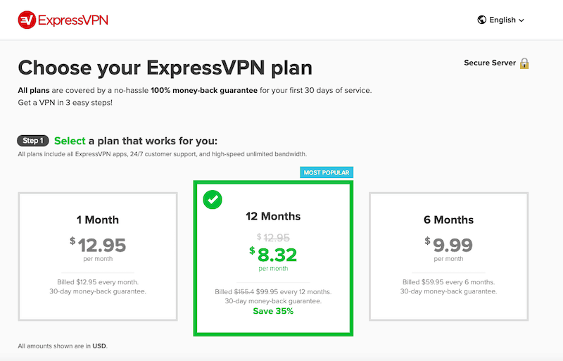 Express VPN pricing